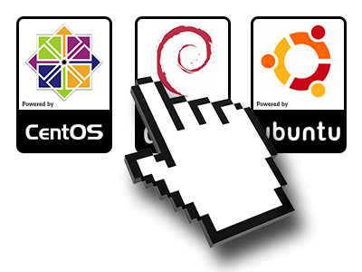 A Variety of Linux distributions